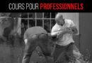Cours pour Professionnels
