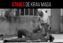 Stages de Krav Maga
