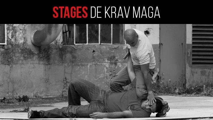 Stages de krav maga et self defense marseille